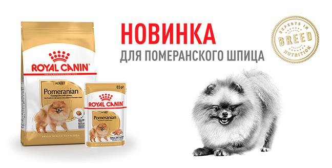 Royal Canin Pomeranian